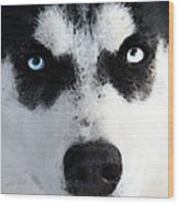 Husky Dog Art - Bat Man Wood Print