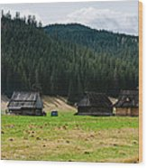 Huts In The Hills Wood Print