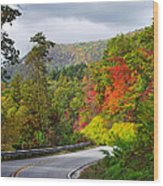 Hwy 281 In The Fall  Wood Print