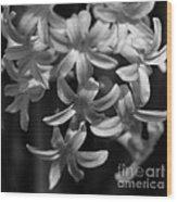 Hyacinth In Black And White Wood Print