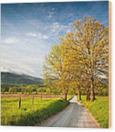 Hyatt Lane Cade's Cove Great Smoky Mountains National Park Wood Print