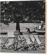 Hyde Park In London England Wood Print