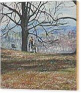 Hyde Park Ny Wood Print