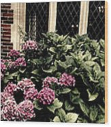 Hydrangea Blossoms Wood Print