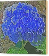 Hydrangea Blues Wood Print