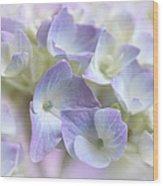 Hydrangea Floral Macro Wood Print