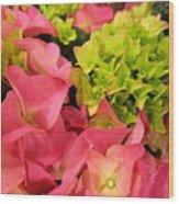 Hydrangea Joy Wood Print