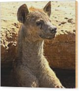 Hyena In Den Wood Print