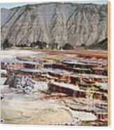 Hymen Terrace Yellowstone National Park Wood Print