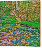 Hyper Childs Y15 Wood Print