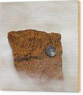 I Am A Rock Wood Print