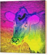 I Think I Am The Most Colorful Cow You Know  Wood Print