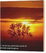 I Am The Way John 14-6 Wood Print