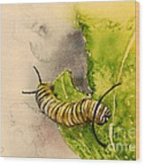 I Am Very Hungry - Monarch Caterpillar Wood Print