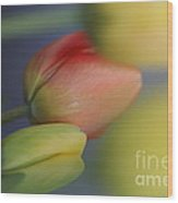 I Do Love Tulips . Wood Print