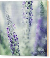 I Dream In Lavender Wood Print