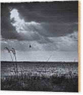 I Fly Away Wood Print