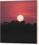 I Love Sunsets Three Wood Print