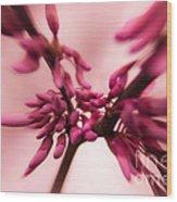 I See Red Wood Print