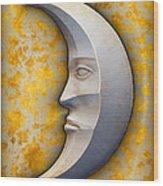 I See The Moon 1 Wood Print
