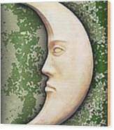 I See The Moon 3 Wood Print by Wendy J St Christopher