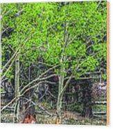 I See You 6172 Wood Print