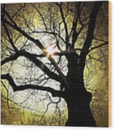 I Think I Shall Never See A Poem As Lovely As A Tree... Wood Print