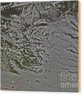 Ice Abstration 1 Wood Print