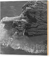 Ice Among The Floating Tree Wood Print