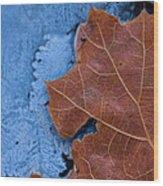 Ice And Life Wood Print