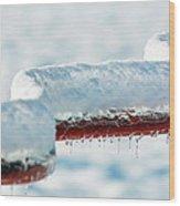 Ice And Snow-5505 Wood Print
