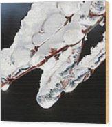 Ice And Snow-5537 Wood Print