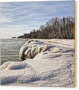 Ice Covered Shores Of Lake Michigan Wood Print