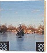 Satin Ice Covered Snow Wood Print