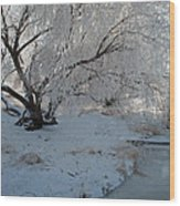 Ice Covered Tree And Creek In Montana Wood Print