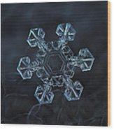 Snowflake Photo - Ice Crown Wood Print