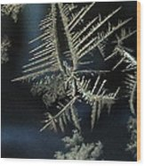Ice Crystals Wood Print