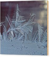 Ice Crystals Of Winter Wood Print