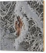 Ice Crystals On A Leaf Wood Print