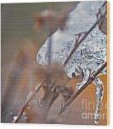 Ice Drop Wood Print