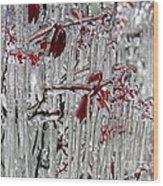 Ice Fence Wood Print