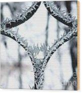 Ice First Kiss Wood Print