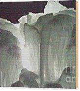 Ice Flow 10 Wood Print