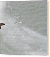 Ice Goose Wood Print