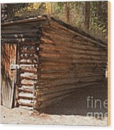 Ice House At The Holzwarth Historic Site Wood Print