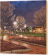 Ice In The Park - Greensboro Wood Print