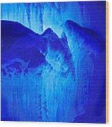 Ice Is Nice Wood Print