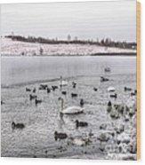Ice Lake Wood Print
