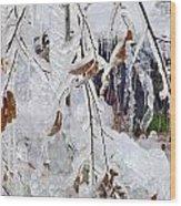 Ice Leaves Wood Print