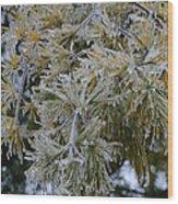 Ice Needles Wood Print